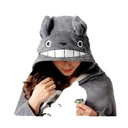 Starting My Totoro Collection